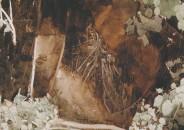 José María Mezquita 12