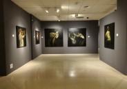 Iñaki García Ergüin. Exposición Antológica 1948 – 2015. 11