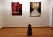Perros amantes del Arte 3