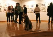 Perros amantes del Arte 10