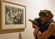 Perros amantes del Arte 29