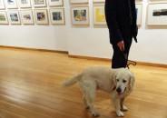 Perros amantes del Arte 24